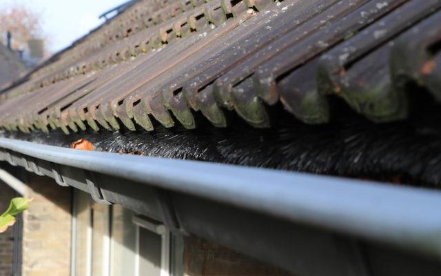 Oranjewijk Veldhoven - Vogelschroten - Groenen Bouw & Onderhoud